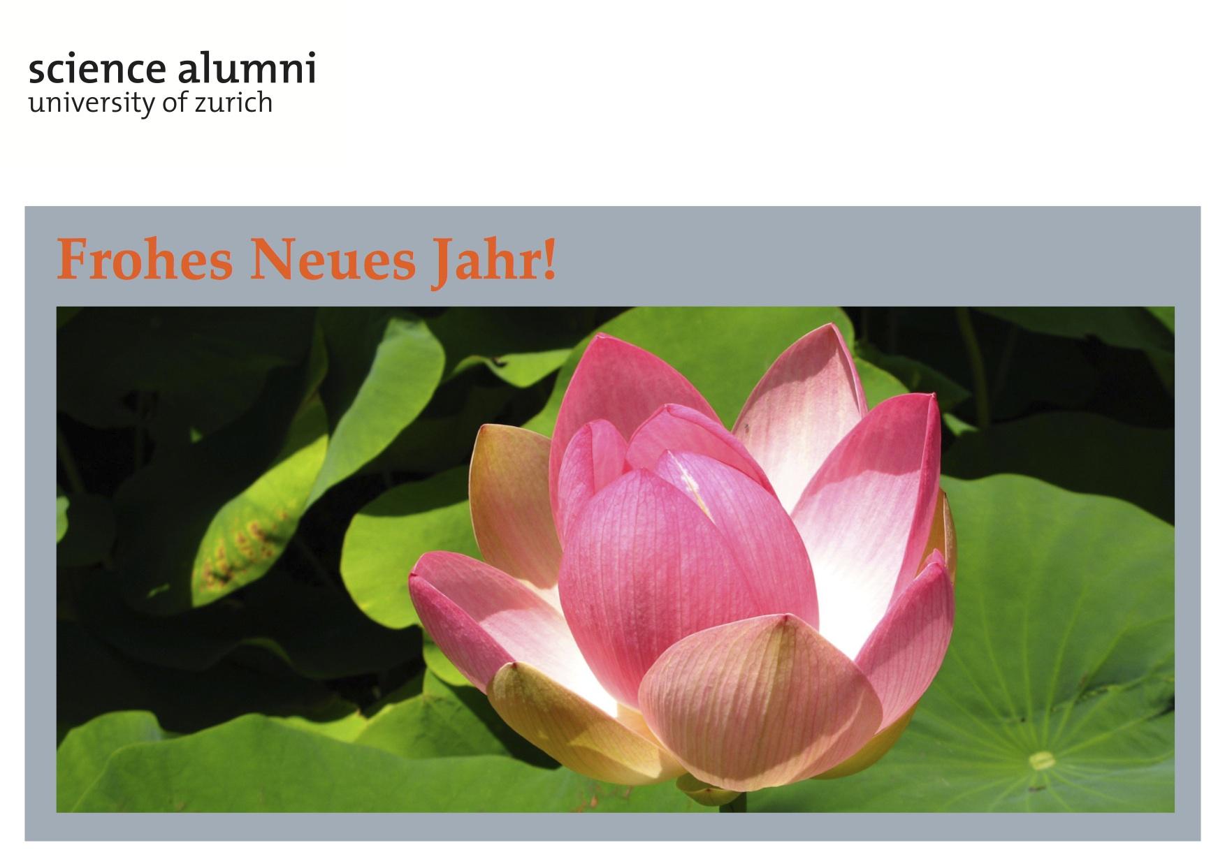UZH - Science Alumni UZH - Frohes Neues Jahr 2013!